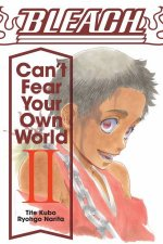 Bleach Cant Fear Your Own World Vol 2