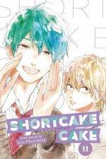 Shortcake Cake Vol 11