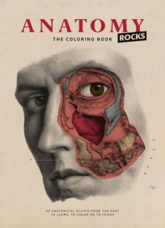 Anatomy Rocks: The Coloring Book by Rodolphe Lachat - 9782374950082 - QBD  Books