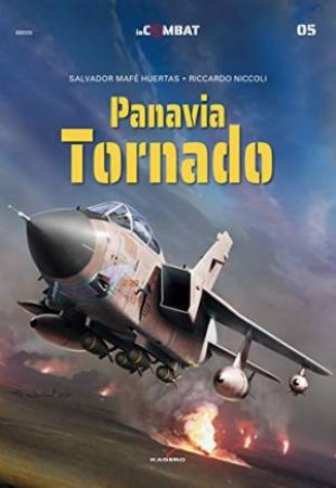 Panavia Tornado by Salvador Mafe Huertas