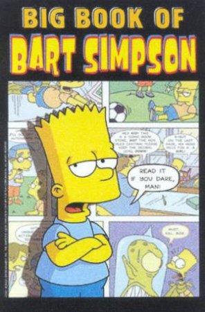 Big Book of Bart Simpson by Matt Groening & Igor Baranko & James Bates