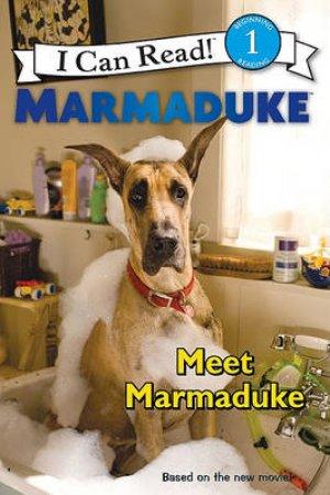 Meet Marmaduke by Kirsten Mayer