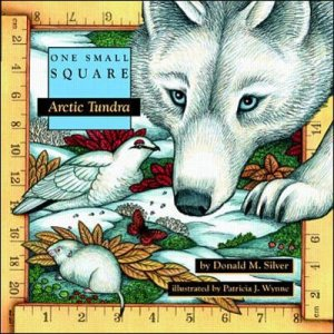 Arctic Tundra by Donald M. Silver & Patricia J. Wynne
