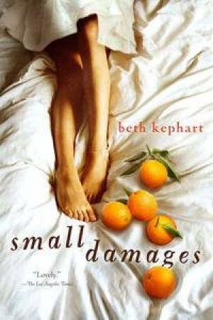 Small Damages by Beth Kephart