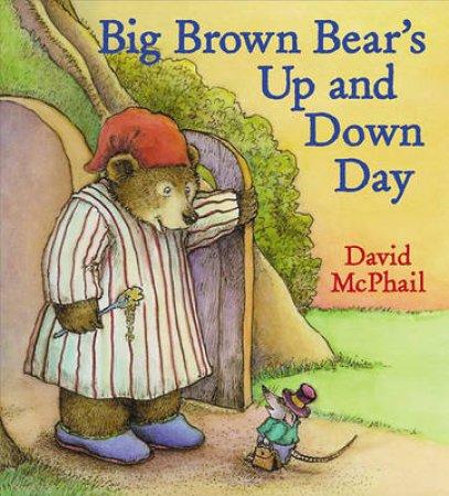 Big Brown Bear's Up And Down Day by David McPhail & David McPhail