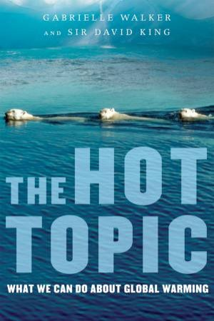 The Hot Topic by Gabrielle Walker & D. A. King