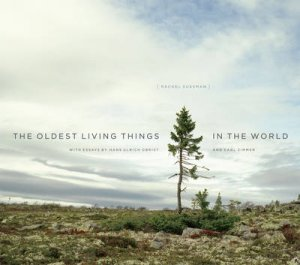The Oldest Living Things in the World by Rachel Sussman & Hans Ulrich Obrist & Carl Zimmer