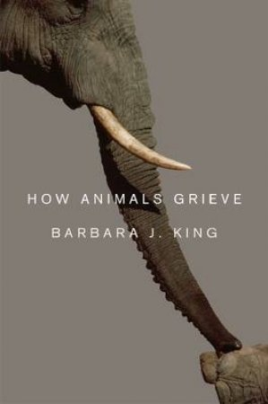 How Animals Grieve by Barbara J. King