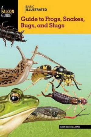 Basic Illustrated Guide to Frogs, Snakes, Bugs, and Slugs by John Himmelman