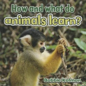 How and What Do Animals Learn?