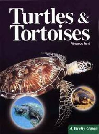 Turtles and Tortoises by Vincenzo Ferri & Anna Bennett