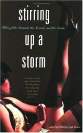 Stirring Up a Storm by Marilyn Jaye Lewis