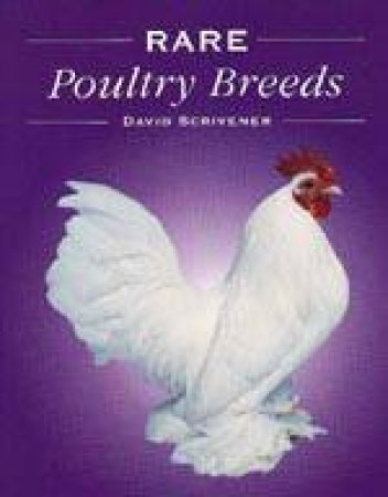 Rare Poultry Breeds by David Scrivener